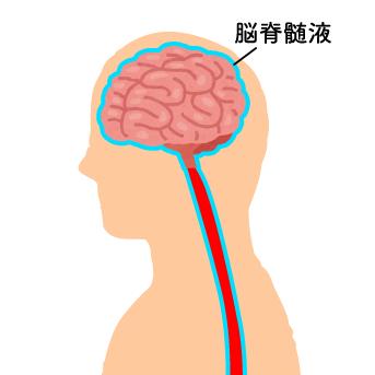 fluid_circulation_img1